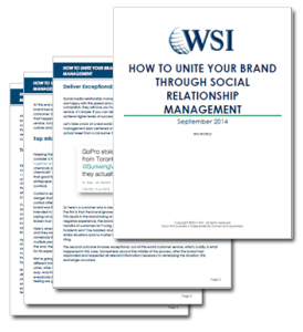 WSI Social Relationship Management Image
