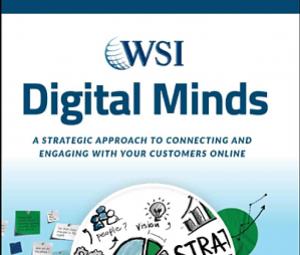 Digital Minds WSI